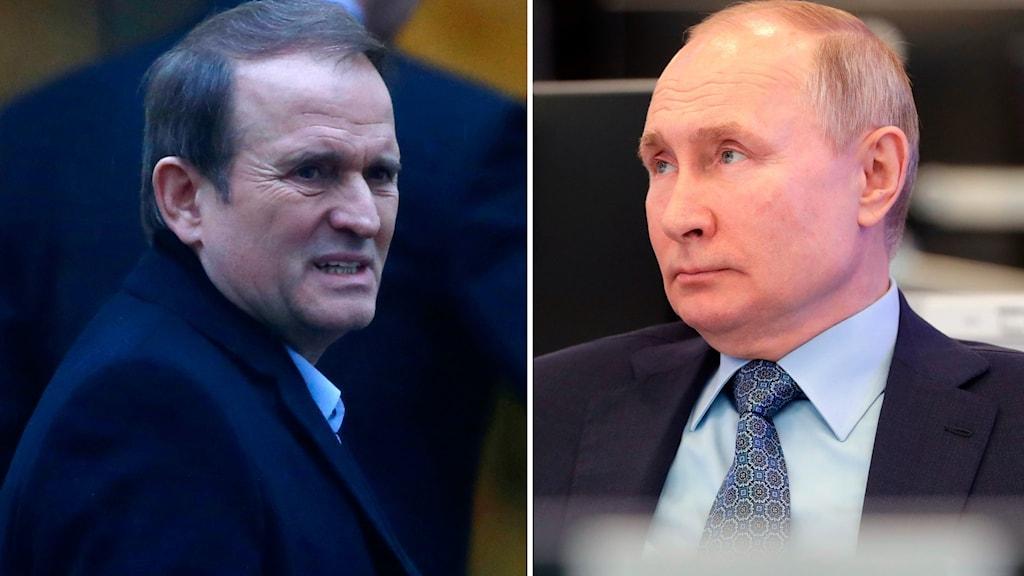 Politikern och affärsmannen Viktor Medvedtjuk och Rysslands president Vladimir Putin.