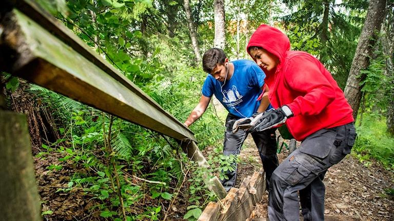 Arkivbild. Två ungdomar river en trappa i Visättra, Huddinge.