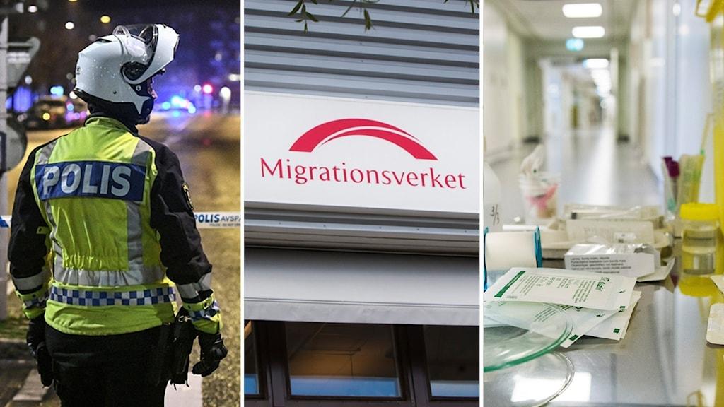 Tresplit på polis bakifrån, migrationsverkets skylt och fötter med sjukhuskorridor.