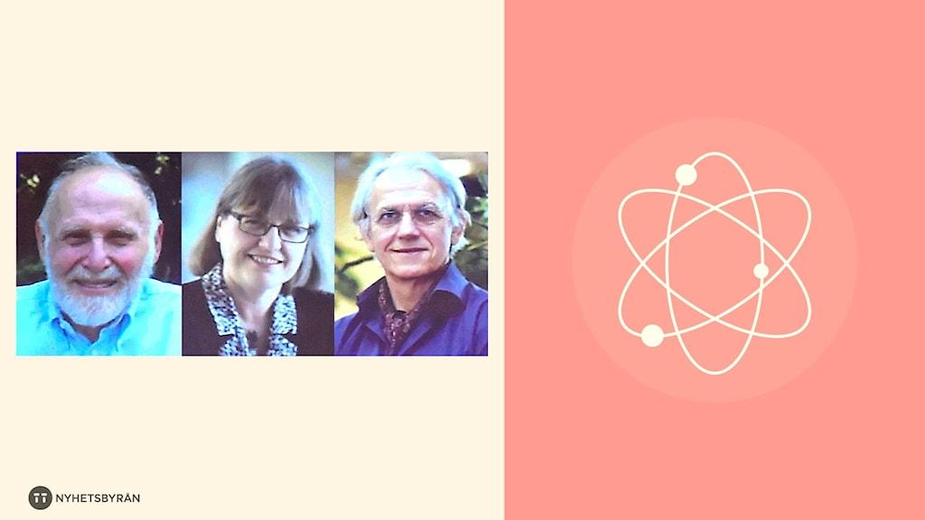 Nobelpristagarna Arthur Ashkin samt Gérard Mourou och Donna Strickland.