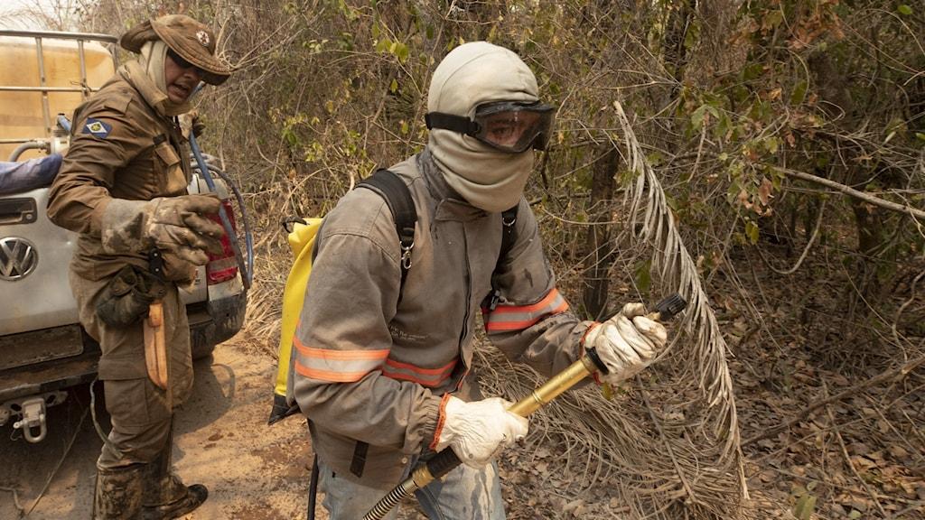 Brandman som kämpar mot storbranden i Patanal.