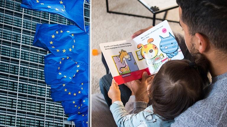 Delad bild: EU-flaggor, en pappa som läser för ett litet barn.