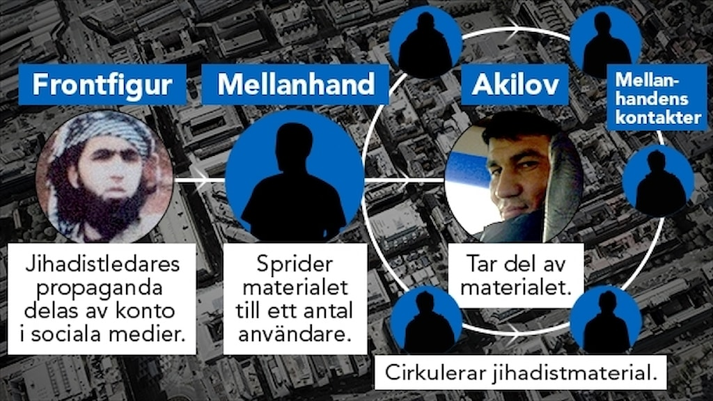 Grafik visar hur en jihaedistledares propaganda spreds i sociala kanaler, via en mellanhand till ett antal kontakter i sociala medier. Bland dem fanns den huvudmisstänkte till terrorådådet i Stockholm, Rakhmat Akilov. Grafik: Nils Lindström/Sveriges Radio.