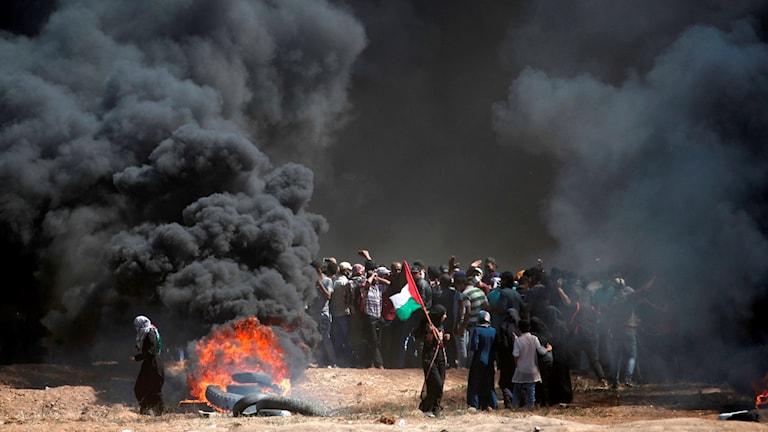 RÖK, GAZA