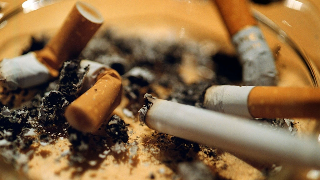 сотрудники курят