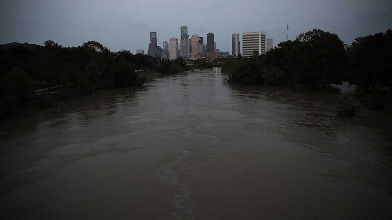Buffalo Bayou, Houston.
