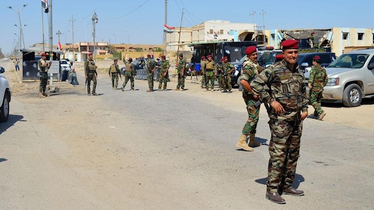 Irakiska säkerhetsstyrkor under en aktion i Anbar-provinsen i Irak. Arkivbild.