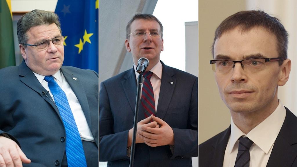 Linas Linkevicius, Edgars Rinkēvičs och Markku Ulander