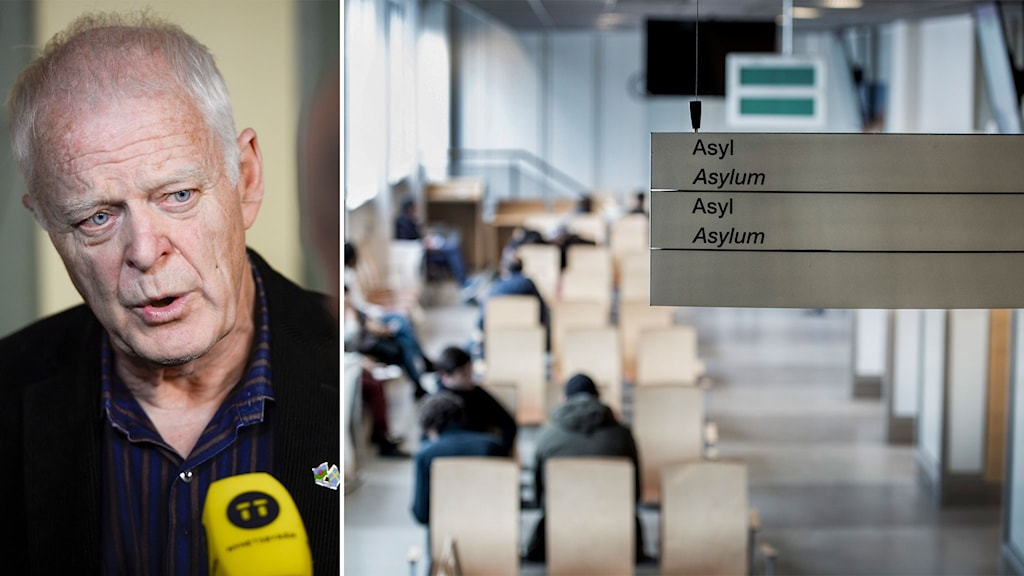 Thomas Hammarberg och bild på vänterum på migrationsverket