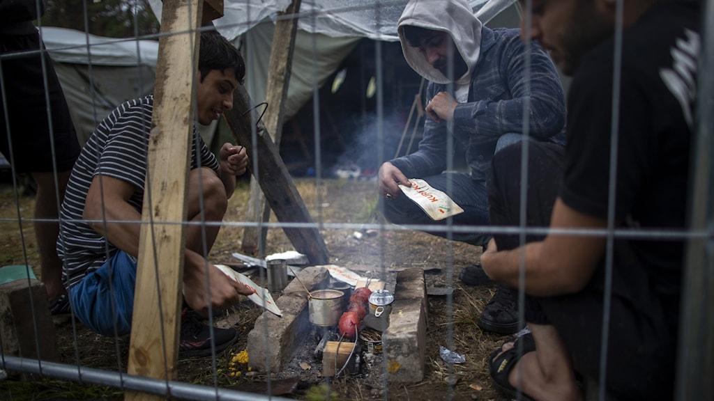 Migranter i det litauiska migrantlägret Rudnikai 38 kilometer söder om Vilnius