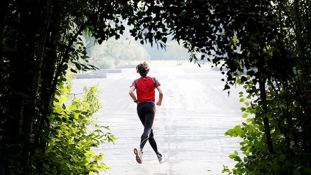 motion, springa, jogga, träning