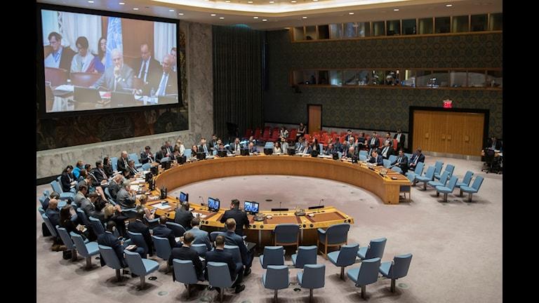 Arkivfoto FN:s säkerhetsråd som sitter i möte.