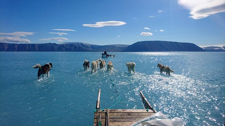 Nya flygplatser ska få fler att upptäcka Grönland.