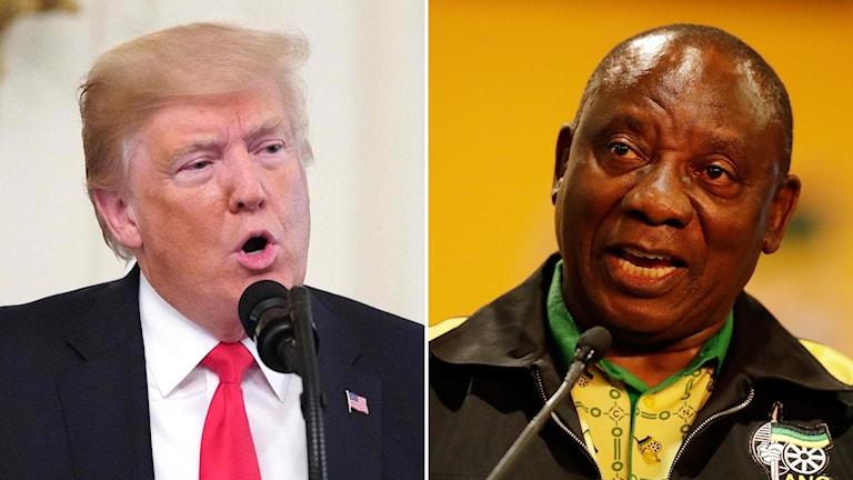 Donald Trump, USA:s president och Cyril Ramaphosa, Sydafrikas president.