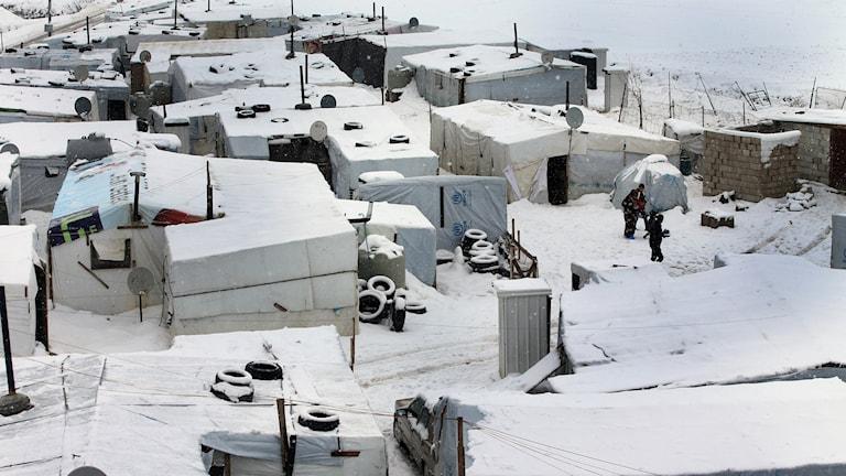 Arkivbild: Snötäkt flyktinglänger med syriska flyktingar i Libanon. Foto: Hussein Malla/TT.