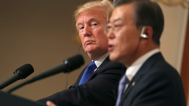 President Trump och Sydkoreas president Moon Jae-in på en presskonferens i Seoul i tisdags. Foto: Andrew Harnik/TT.