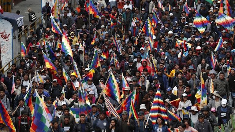 Folkmassa som demonstrerar.