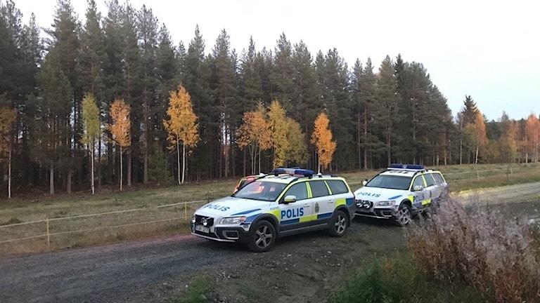 Polisbilar i skog.