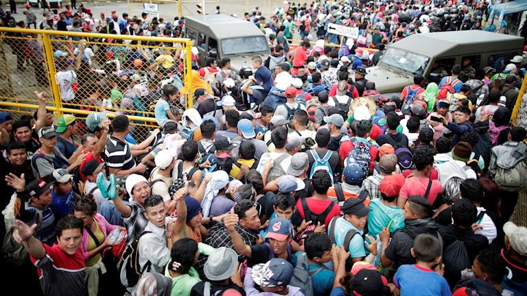 Migranter från Honduras tog sig förbi gränsen, in i Mexiko.