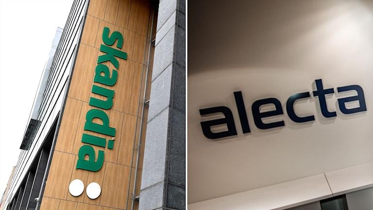 Försäkringsbolagen Skandia och Alecta.