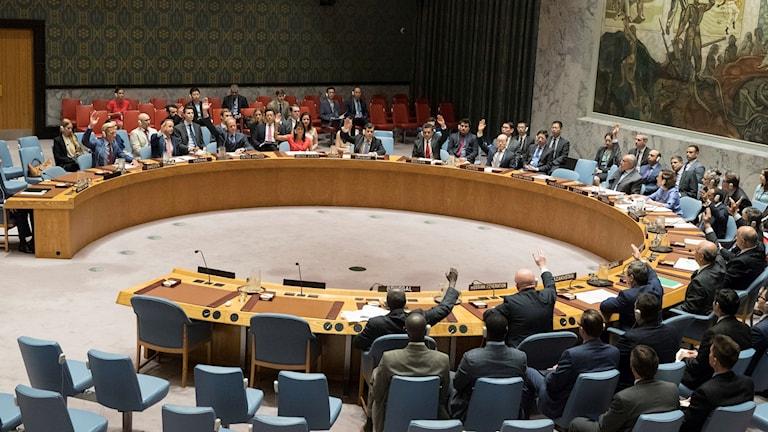 FN:s säkerhetsråd som sitter i möte (arkivbild).