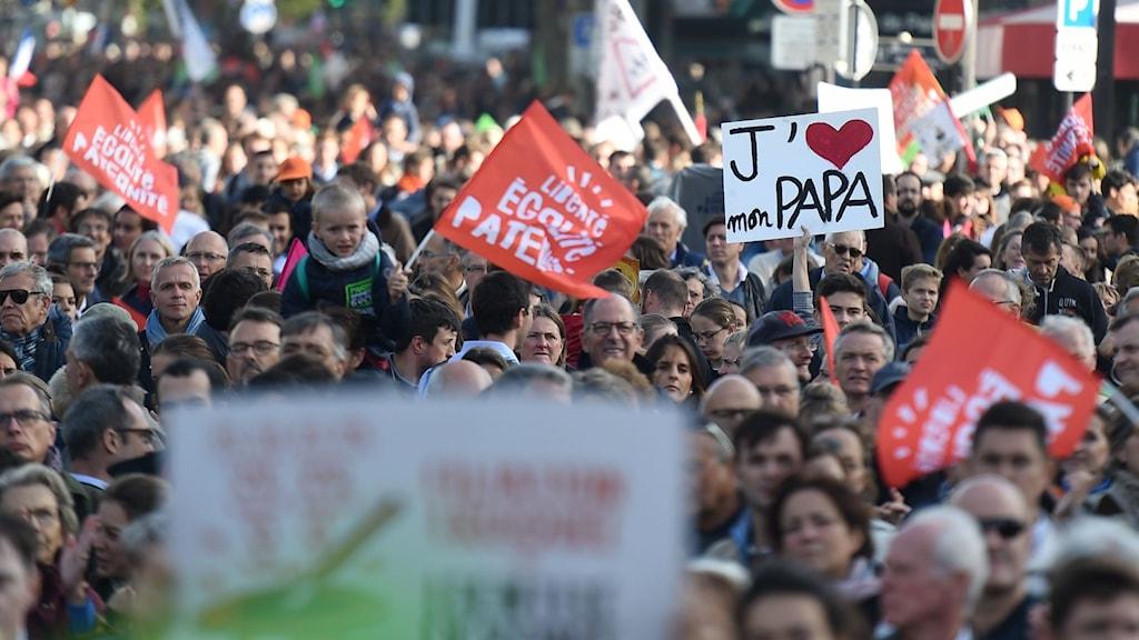 Demonstranter på Paris gator.