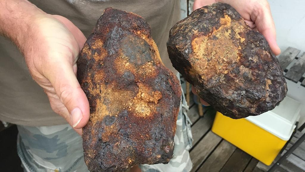 En person håller en sten i varsin hand. Stenarna är lite större än en handflata och bruna i färgen.
