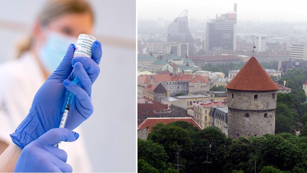 Kravet i Estland: Vaccinera dig eller få sparken