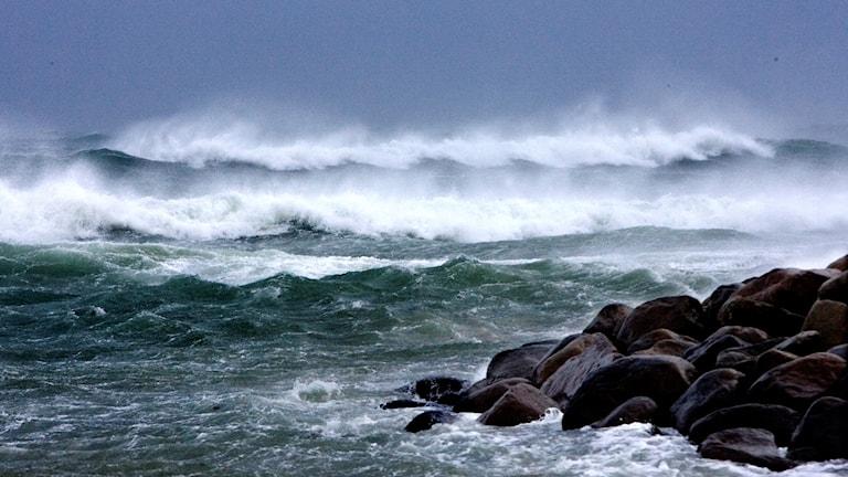 De hårda vindarna orsakar problem på flera håll i västra Sverige.