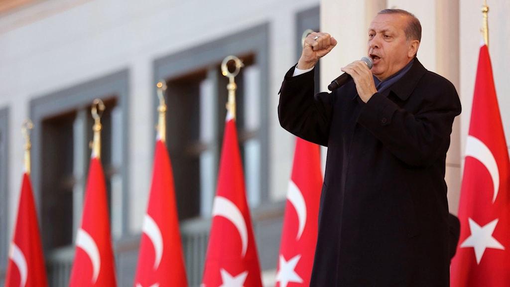 Turkiets president Erdogan talar framför flaggor med knuten näve