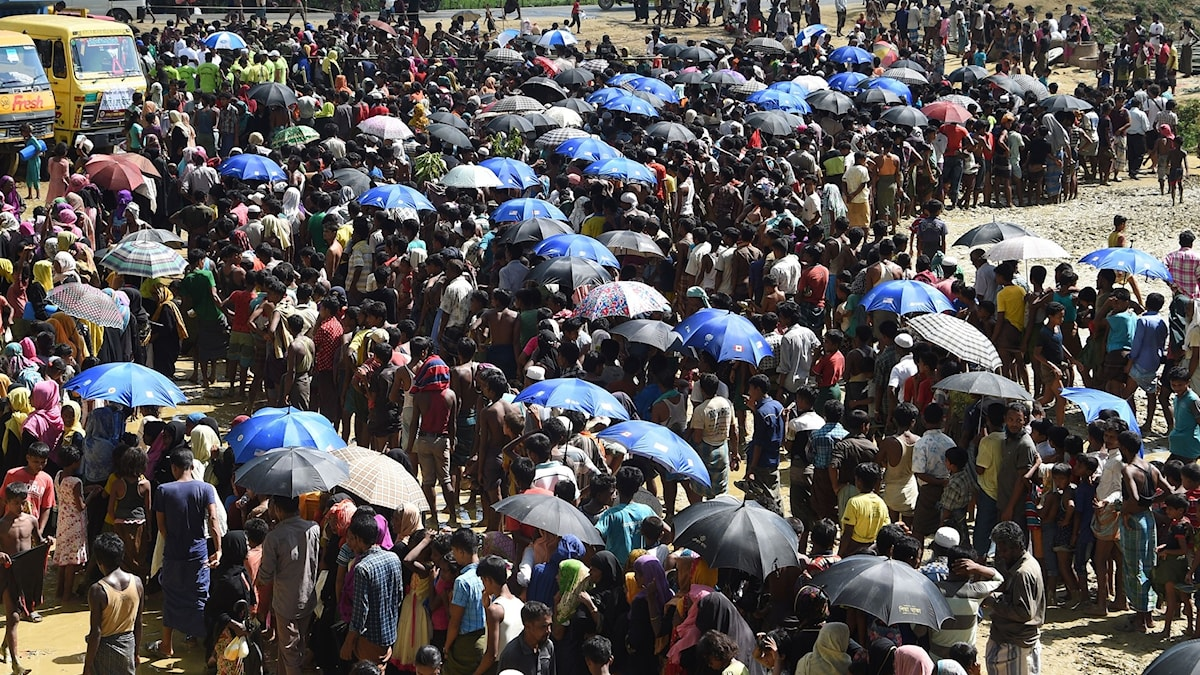 rohingyer i Bangladesh