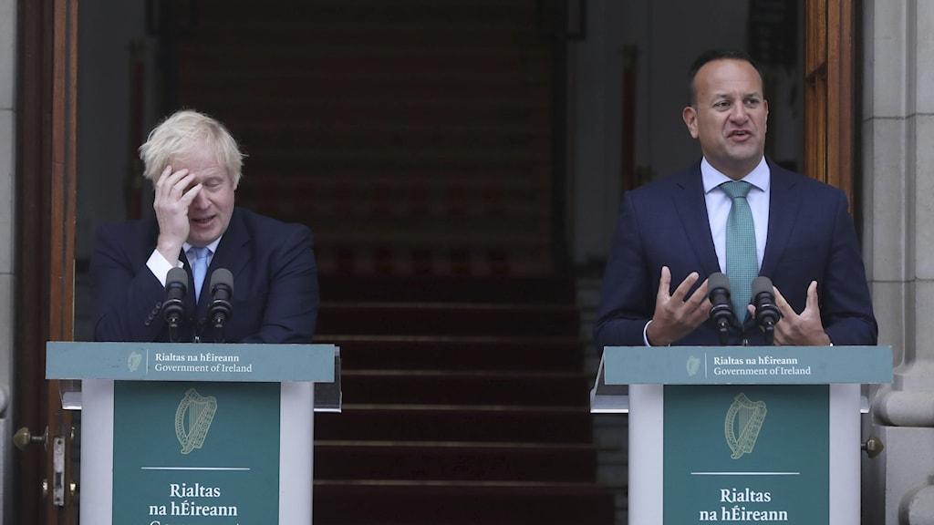 Storbritanniens premiärminister Boris Johnson och Irlands premiärminister Leo Varadkar.