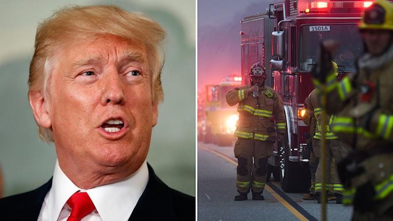 En bild på Trump och på brandmän som bekämpar branden i Kalifornien.