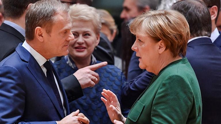 Europeiska rådets ordförande Donald Tusk talar med Tysklands förbundskansler Angela Merkel på mötet i Bryssel idag. Foto: Geert Vanden Wijngaert/TT.