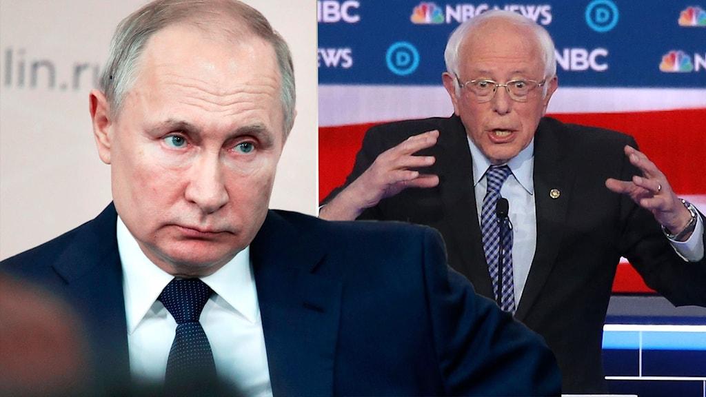 Ryssland uppges vilja hjälpa Sanders och Trump.