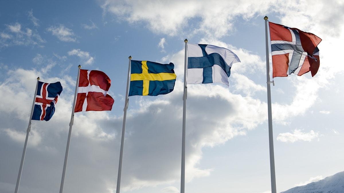De nordiska länderna.