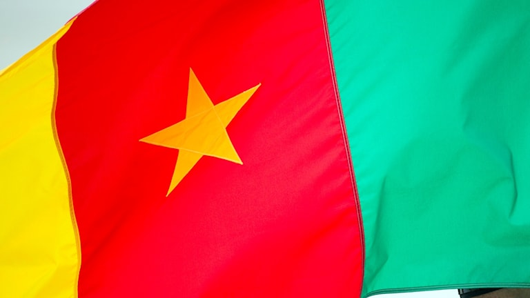kamerun, flagga