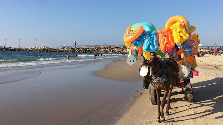 Barn leker i vattnet och badleksaker säljes på Gazas strand där föroreningarna i vattnet nått kritiska nivåer.