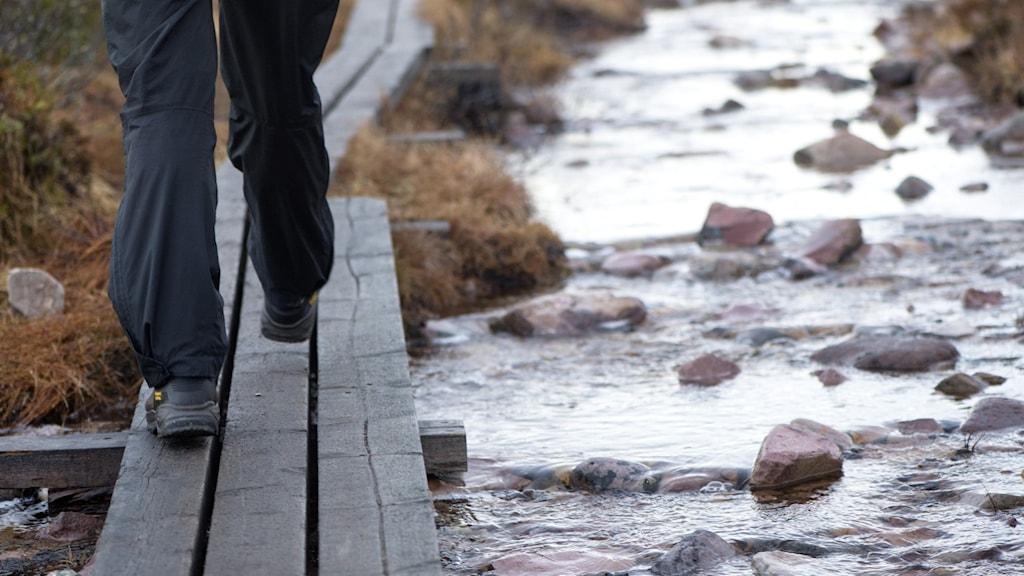 Person som vandrar.