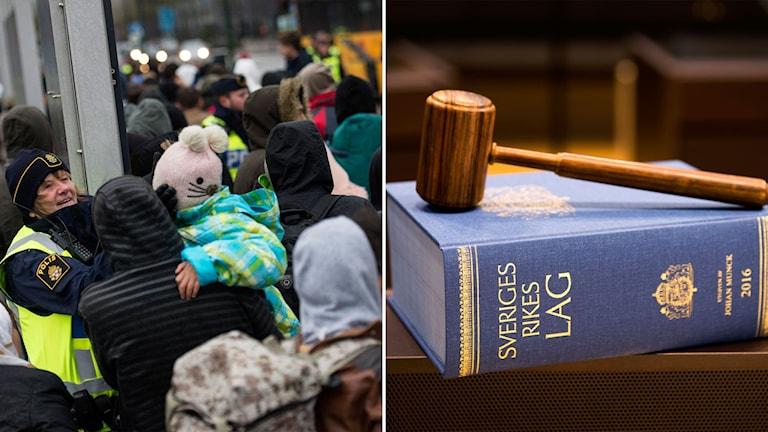 asylrätt migrationsdomstolar