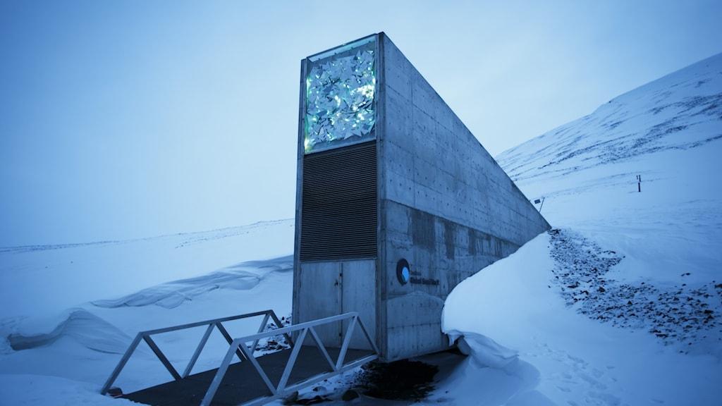 Frövalvet på Svalbard.