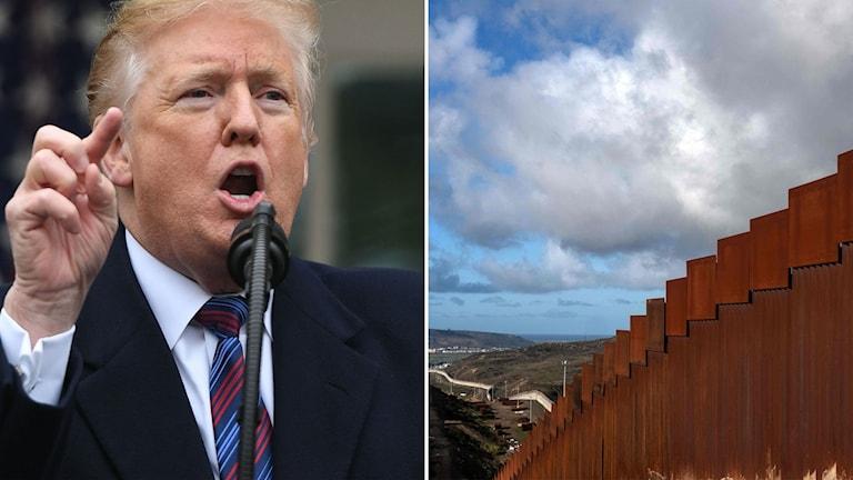 USA:s president Donald Trump och ett stängsel vid gränsen mellan USA och Mexiko.