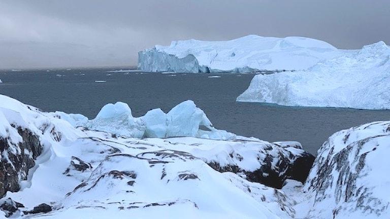 Isberg utanför Ilulissat i Grönland