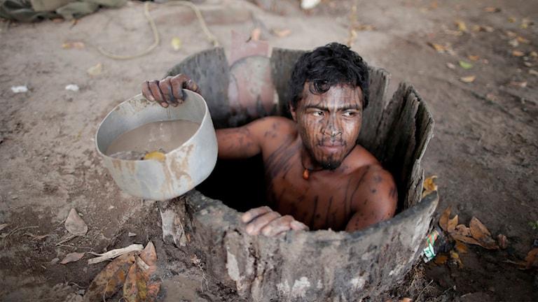 Miljöaktivisten Paulo Paulino Guajajara sköts till döds av illegala skogsskövlare igår.