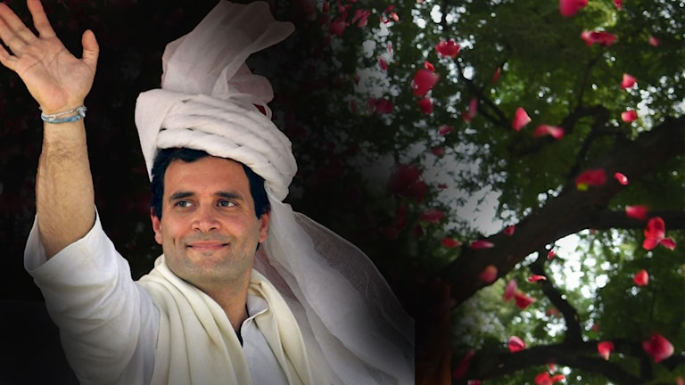 Gandhi valvinnare i Indien