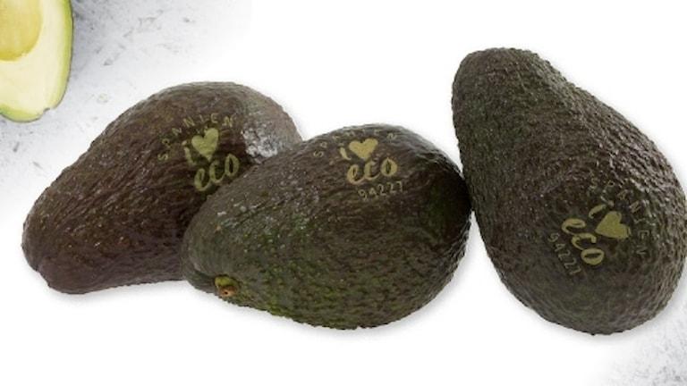 Ekologiska och lasermärkta avocados.