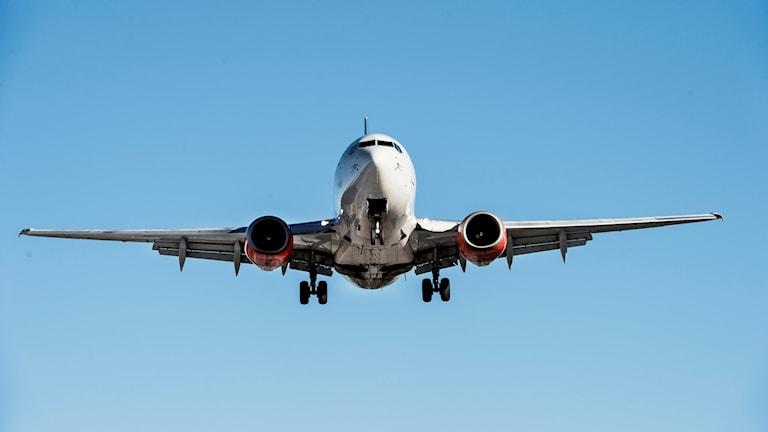 Bild på flygplan. Foto: Lars Pehrson/SvD/TT.