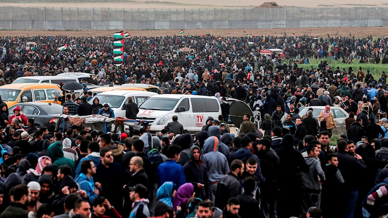 En bild av demonstranterna vid gränsen mellan Gaza och Israel.