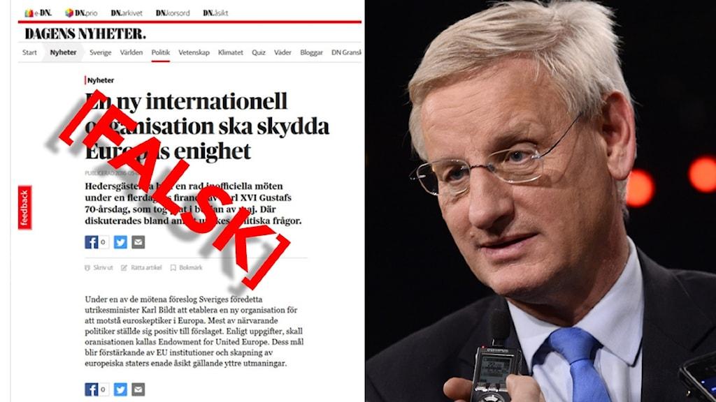 Den falska och Carl Bildt.