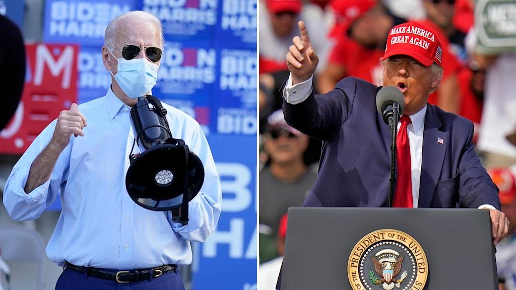 Delad bild: Biden med munskydd och megafon, Trump utan munskydd framför publik.
